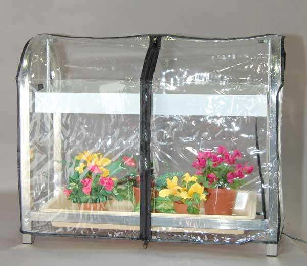 g11a-tent-flowers-web