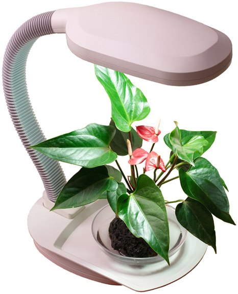 Desktop Plant Light With Flexible Arm Growers Supply Company